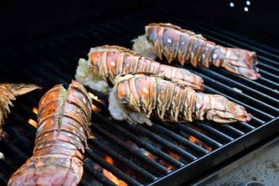 lobster-tail
